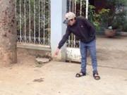 An ninh Xã hội - Thiếu nữ bị đánh hội đồng đến chết trên đường