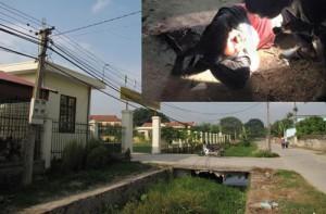 An ninh Xã hội - Trộm chó bị đánh chết ở Quảng Ninh: Kẻ trộm chuyên nghiệp