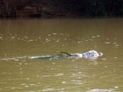 An ninh Xã hội - Mẹ ngất xỉu khi phát hiện xác con trong bao tải trôi sông