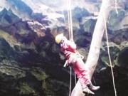 Tin tức Việt Nam - 'Độn thổ' vào động núi lửa lớn nhất Đông Nam Á