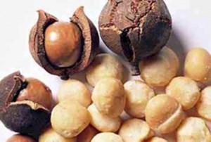"""Sức khỏe đời sống - """"Tuyệt chiêu"""" giảm cân hiệu quả bằng các loại hạt"""