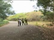 An ninh Xã hội - 9 giờ phá vụ án giết người trong đêm tại rừng cao su