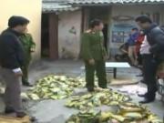 Video An ninh - Nam Định: Bắt 7 tấn mì chính, hạt nêm giả