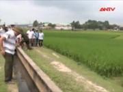 Video An ninh - Nỗi đau sau vụ lái xe ôm bị sát hại giữa cánh đồng