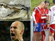 Các giải bóng đá khác - Sao 360 độ: Schweinsteiger vẫn chưa dứt tình cũ