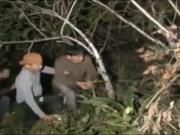 Bản tin 113 - Truy bắt tên cướp táo tợn trên núi đá