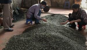 Thị trường - Tiêu dùng - Đột nhập làng bánh kẹo siêu rẻ giữa Hà Nội