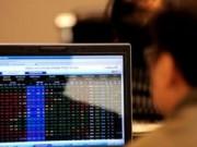 Tài chính - Bất động sản - Cổ phiếu ngân hàng giảm kịch sàn, vì sao?