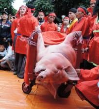 """Tin tức trong ngày - Đề xuất đổi tên Lễ hội """"chém lợn"""" thành """"rước lợn"""""""