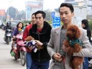 8X + 9X - Hàng trăm bạn trẻ HN đưa chó, mèo đi khám bệnh miễn phí