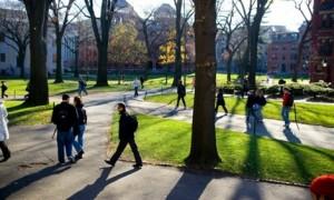 Bạn trẻ - Cuộc sống - ĐH Harvard: Ban hành chỉ thị cấm thầy - trò yêu nhau