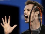 """Thể thao - """"Quần hùng"""" hội tụ ở Rotterdam, Murray sáng giá"""