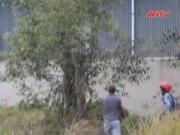 Video An ninh - Bình Dương: Nam công nhân treo cổ chết bất thường