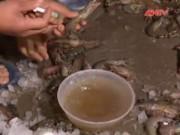 Thị trường - Tiêu dùng - Bơm tạp chất vào tôm chết bán tràn lan khắp Hà Nội