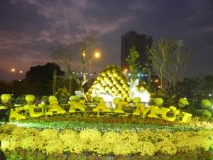 Tin tức trong ngày - Đường hoa xuân Đà Nẵng lung linh dưới ánh đèn màu
