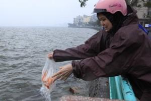 Tin tức trong ngày - Người Hà Nội thả cá chép tiễn ông Táo trong mưa rét