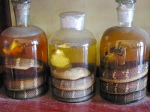 Sức khỏe đời sống - Liệt dương suốt đời vì uống rượu rắn ngày Tết