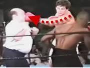Clip Đặc Sắc - Trọng tài boxing: Bị đòn oan nhiều nhất thế giới