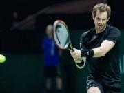 Tennis - Murray – Mahut: Dễ như trở bàn tay (V1 Rotterdam Open)