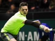 Thể thao - Raonic, Berdych quyết hạ gục người Ý (V2 Rotterdam Open)