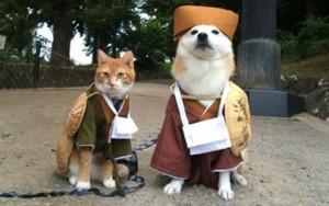 Tin tức thời trang - Chế quần áo cũ thành trang phục cho cún cưng diện Tết
