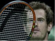 Tennis - Berdych thắng nhàn, Murray thua sốc ở tứ kết Rotterdam
