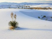 Du lịch - Ba đồi cát đẹp nhất miền Trung