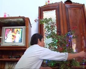 Tin tức Việt Nam - Tết đầu tiên có điện ở đảo Lý Sơn