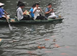 Tin tức trong ngày - Du khách thích thú ngắm cá chép đỏ lạ ở Tràng An