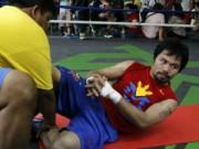 Thể thao - Pacquiao tập luyện tích cực chờ Mayweather