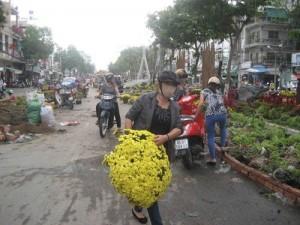 Tin tức trong ngày - Tranh nhau gom hoa ở đường hoa Cần Thơ