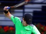 Đua xe F1 - Tin HOT 26/2: Murray thua sốc ở tứ kết Dubai