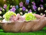 Thời trang - Clip hậu trường chụp ảnh trẻ sơ sinh siêu đáng yêu