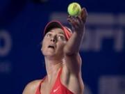 Võ thuật - Quyền Anh - Tin HOT 27/2: Sharapova vất vả vào bán kết ở Mexico