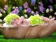 Clip hậu trường chụp ảnh trẻ sơ sinh siêu đáng yêu