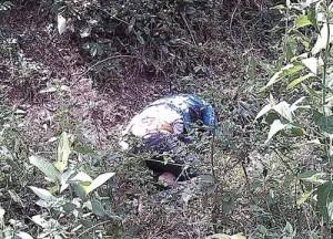 An ninh Xã hội - Phát hiện thi thể nữ sinh bị phân hủy trong rừng
