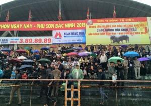 Tin tức Việt Nam - Đội mưa phóng xe hàng chục km xem trâu chiến đọ sức