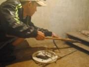 Doanh nhân - 9X làm giàu bằng nghề nuôi rắn cực độc