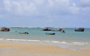 Tin tức trong ngày - Phát hiện xác nam thanh niên ven bờ biển Cô Tô