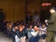 Video An ninh - Bắt gần 90 người trốn đi Trung Quốc lao động trái phép