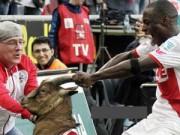 Video bóng đá hot - Ghi bàn, cầu thủ đòi ăn mừng với... dê