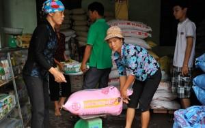 Thị trường - Tiêu dùng - Khó giữ giá phân bón, thức ăn chăn nuôi...