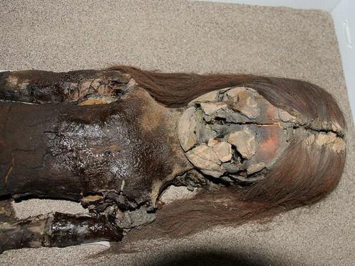 Xác ướp cổ xưa nhất hành tinh đang bị biến thành bùn đen