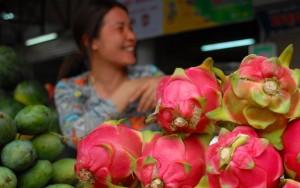 Thị trường - Tiêu dùng - Hoa quả Việt sang Nga: Không nước nào thay thế được