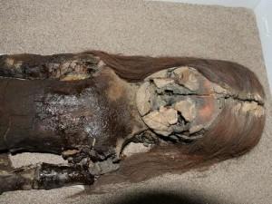 Bí ẩn lịch sử - Xác ướp cổ xưa nhất hành tinh đang bị biến thành bùn đen
