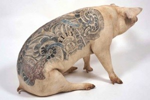 Phi thường - kỳ quặc - Ngạc nhiên với nghệ thuật xăm mình cho lợn, tô màu cho voi