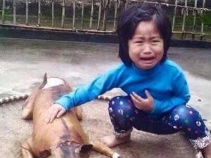 Tình yêu - Giới tính - Xúc động với bức ảnh bé gái nức nở bên chú chó bị giết