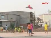 Tin tức Việt Nam - Thả diều trong khu đô thị: Lo ở dưới đất, sợ ở trên cao