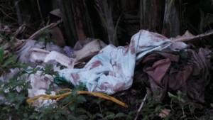 An ninh Xã hội - Nam sinh sát hại cô giáo vì bị phát hiện trộm cắp