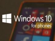 Sản phẩm mới - Xem trước các tính năng của Windows 10 cho điện thoại